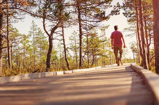 Ile ruchu dziennie potrzebuje dorosły człowiek?
